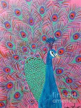 Pink Peacock by Dawn Plyler