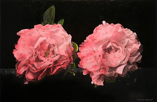 Pink Peonies by Jesse Waugh