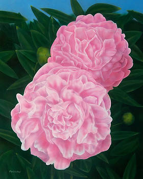 Pink Peonies by Michael Wicksted
