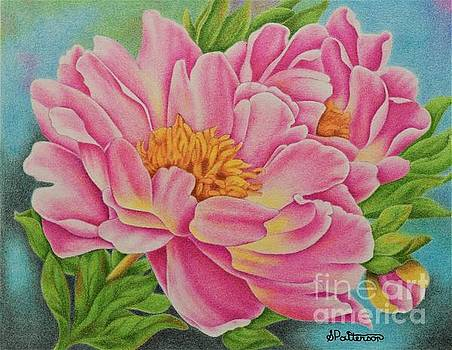 Pink Peonies by Sharon Patterson