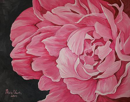 Pink Peony by Nicole Werth