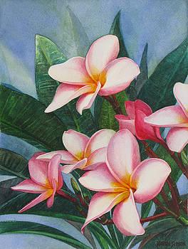 Pink Plumerias by Karen  Sioson