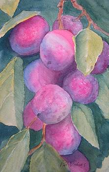Pink Plums by Pat Vickers