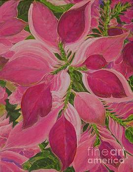 Pink Poinsettia by Gail Kent