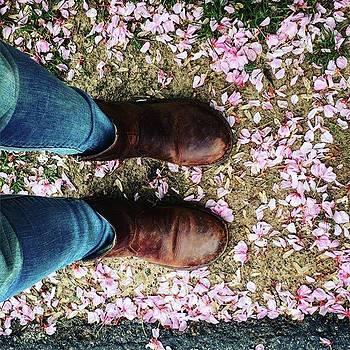 #pink #pretty #cherryblossum by Sharon Halteman