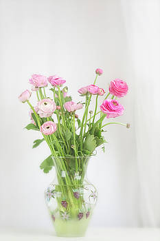 Pink Ranunculus in Glass Vase by Susan Gary