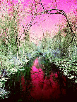 Pink Reflected by Grant Marchand