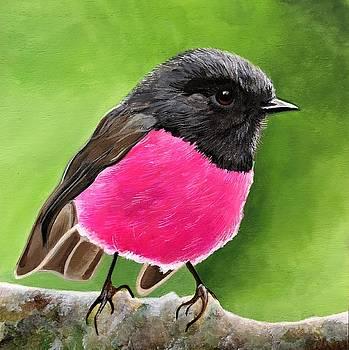 Pink Robin by Ivy Stevens-Gupta