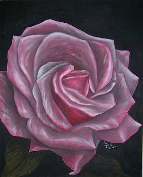 Pink rose by Emily Young