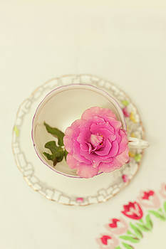 Pink Rose in Teacup by Susan Gary