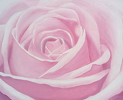 Pink Rose by Maryna Moolman