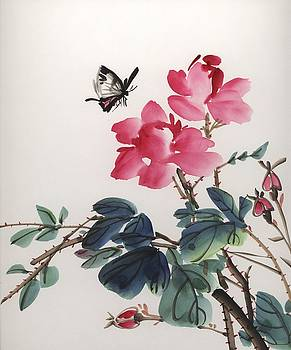 Pink Roses and Butterfly by Yolanda Koh