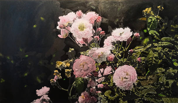 Pink Roses at Arley Walled Garden by Jesse Waugh