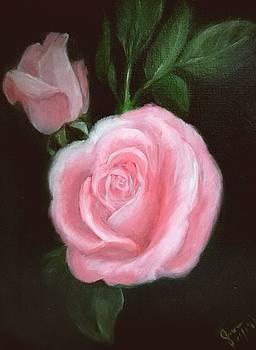 Pink Roses by Enriqueto Sabio