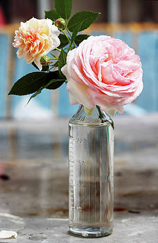Pink roses by Iuliia Malivanchuk
