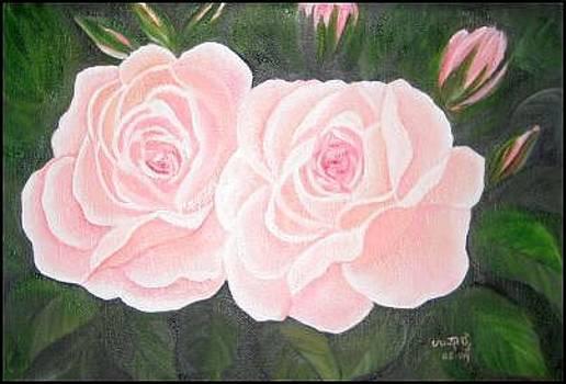 Pink roses by Usha Rai