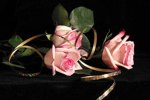 Pink Roses with Ribbon by Janice Paige Chow