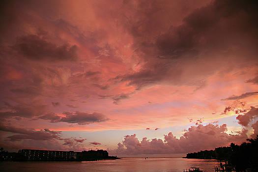 Pink Sky at Night by Carol Kinkead