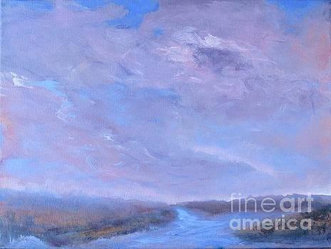 Pink Sky at the Marsh by Vivian HaberfeldMarsh