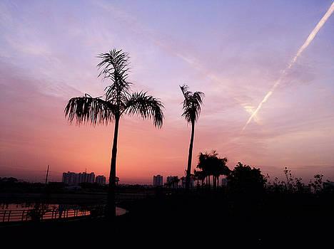 Pink sky by Atullya N Srivastava