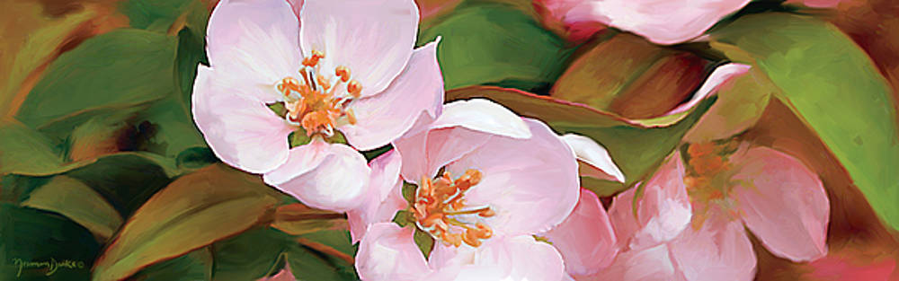 Pink Spring Blossoms by Norman Drake