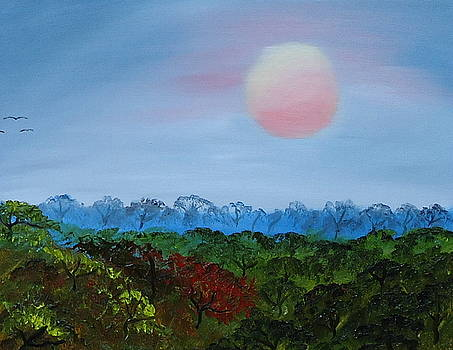 Pink Sun Of Africa by Portland Art Creations