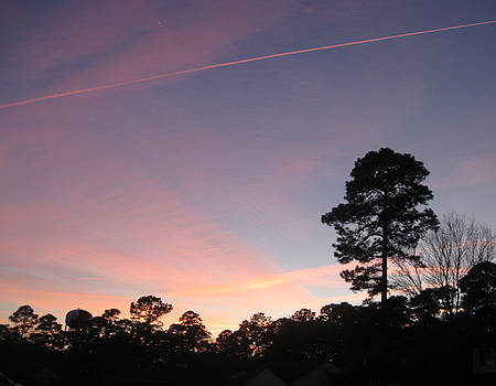 Pink Sunset by Juliana  Blessington