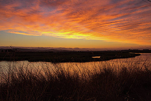 Pink Sunset over Bay Grasses by Beth Partin