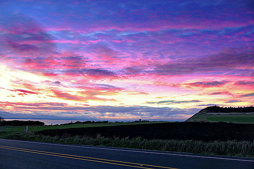 Pink Sunset Over Ebey by Rick Lawler