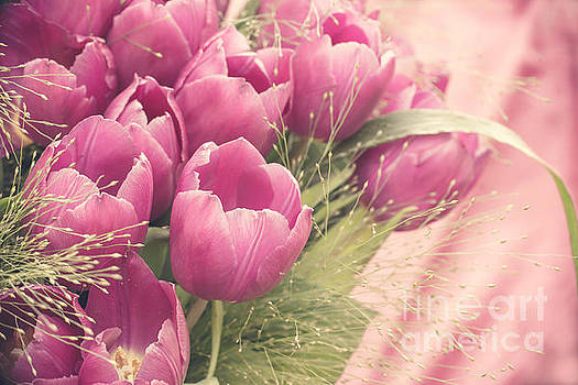 Delphimages Photo Creations - Pink tulips