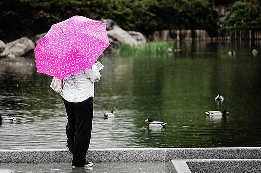Pink Umbrella by Emily Bristor