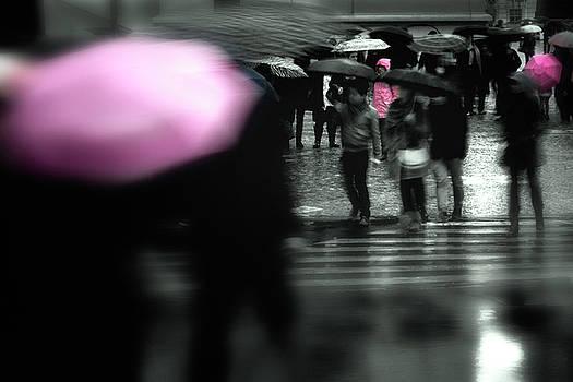 Colin Cuthbert - Pink Umbrellas