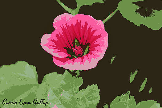 Pink Wildflower Art by Carrie Gallop