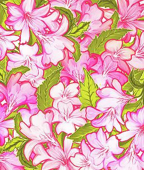 Pink Wonder by Uma Gokhale
