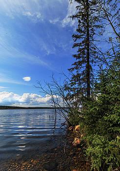 Pinkney Lake by Melanie Janzen