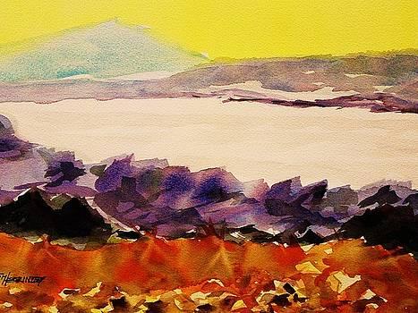 Pinnacle Mountain...Arkansas River by Tom Herrin