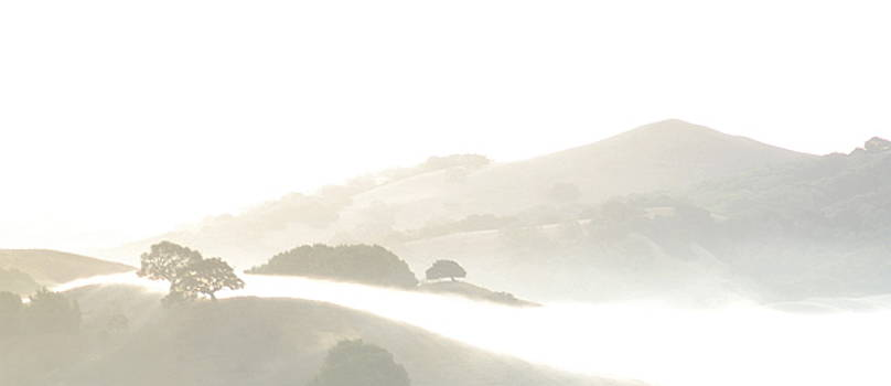 Pinole Valley Morning Mist by Rose Cowperthwaite
