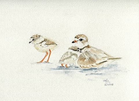 Piping plovers by Wenfei Tong