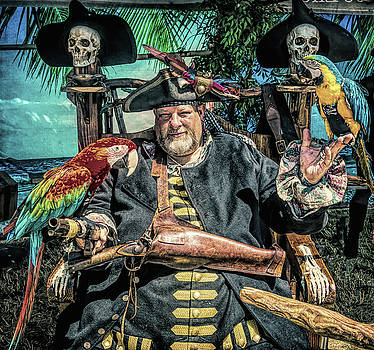 Pirate Captain And Parrots by Garry Gay