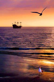 Sam Davis Johnson - Pirates of Clearwater
