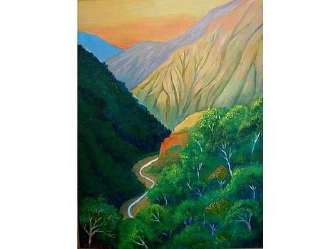 Pirris valley by Jean Pierre Bergoeing