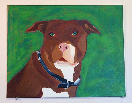 Pit Bull by Emory Goins
