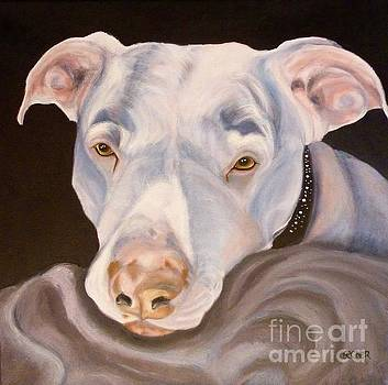 Pit Bull Lover by Susan A Becker