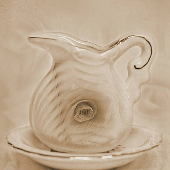 Pitcher And Saucer by Sandra Foster