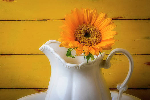 Pitcher With Sunflower by Garry Gay