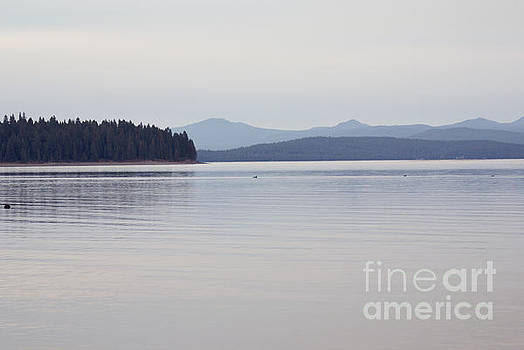 Placid mountain lake by Cindy Garber Iverson