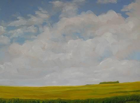Plaines manitobaines  by Liliane Fournier