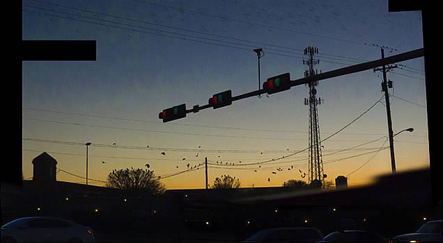 Plainview Sunset - 200480 by TNT Images