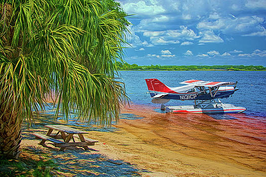 Plane on The Lake by Lewis Mann