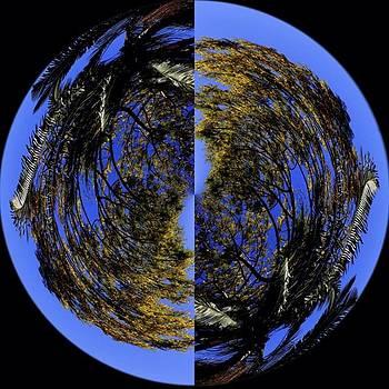 Planeta Ipê by Julian Marques